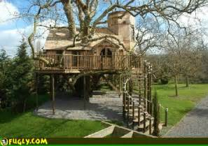best tree houses in the world like the best tree house ever fugly