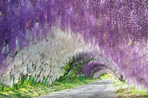 i 20 paesaggi colorati pi 249 belli mondo dove la natura