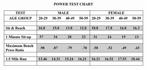 bench press percentile bench press percentile the best 28 images of bench press