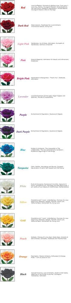rose color meanings chartuvuqgwtrke