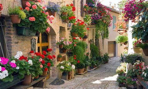 terrazzi in fiore santo spirito per tutto maggio la seconda edizione di