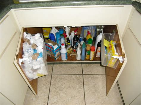 sink storage kitchen the kitchen sink bag storage bigdiyideas
