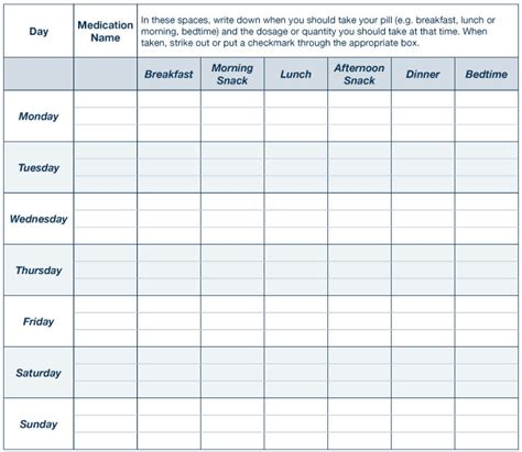 medication templates schedule printable daily animal pill chart template talk to