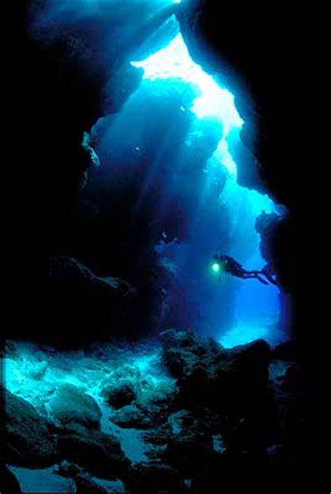 niue dive diving in niue island