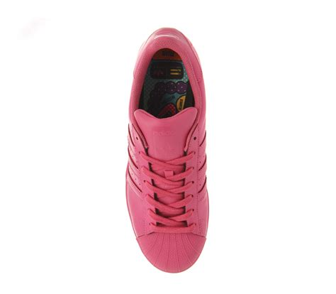 Adidas Supercolour For 37 40 adidas superstar 1 pharrell supercolour semi solar pink