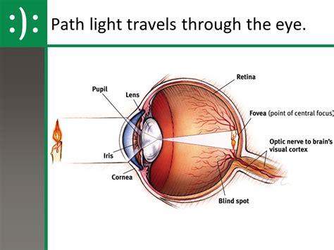 eyeland optical sinking eyeland optical sinking pa eyeland optical sinking