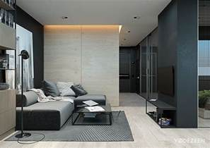Interior Design Studio Apartment division between living spaces is created with a combination of themed