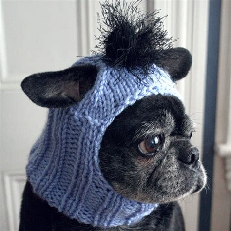 hats with ear holes pin by haid spence on pug pics