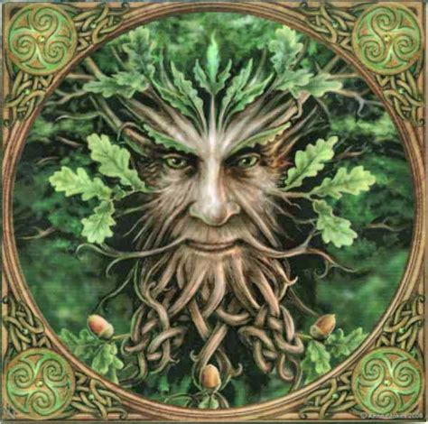 Trees And Their Meanings celtic tree month oak moon temple illuminatus