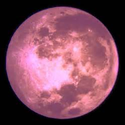 what is a pink moon celebrating the seasons april moon moon in