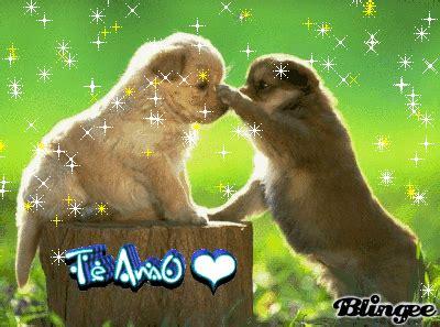 imagenes de animales romanticos im 225 genes de amor de perritos con movimiento