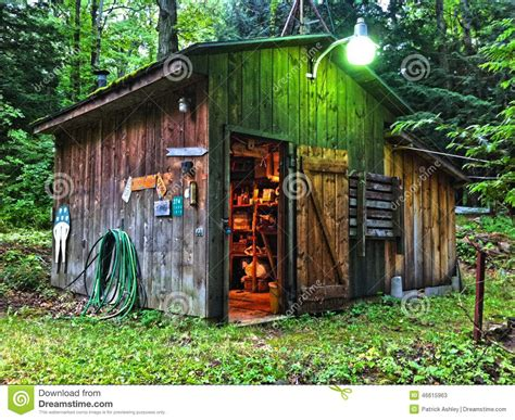 rustic shed in woods stock photo image 46615963