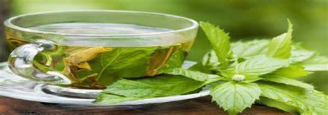 Teh Hijau Sariwangi manfaat teh hijau untuk gigi gas tag