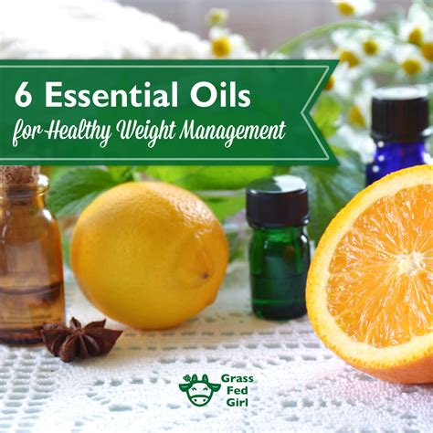 weight management essential oils essential oils for healthy weight management