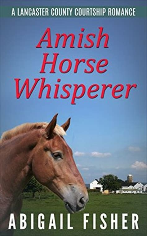 an amish courtship on mountain books amish whisperer by abigail fisher reviews