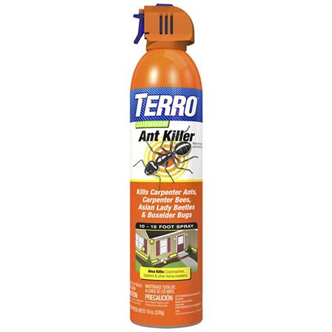 amazon com terro t1700 19 oz outdoor ant killer spray