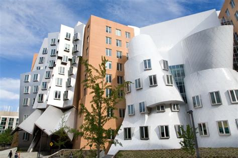 building the and work of frank gehry books frank gehry buildings all about the curve