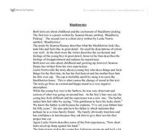 Seamus Heaney Essays by Seamus Heaney Essay Redding Spatial Essay