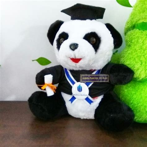 Boneka Panda Warna jual boneka wisuda panda murah kado wisudaku