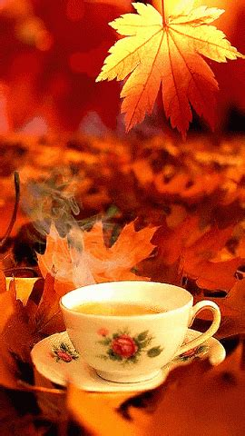 good morning autumn coffee pictures   images