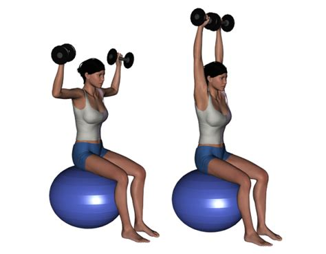 stability ball bench press dumbbell shoulder press on stability ball images