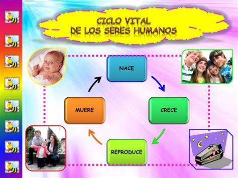 imageens del cilco de vida dels er humano para colorear ciclo vital