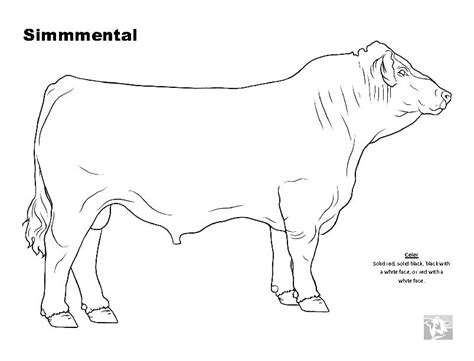 cattle car coloring page cow and calf coloring pages car interior design