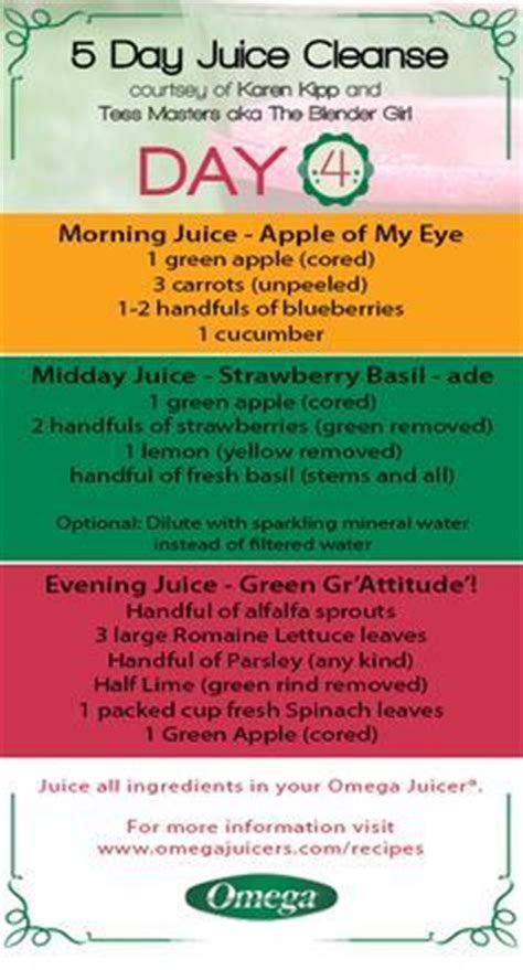 5 Day Detox Smoothie Diet by 1000 Ideas About 5 Day Juice Cleanse On Juice