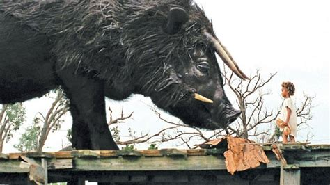 Beasts Of The Southern Wild Movie Reviews Stories Orlando Weekly