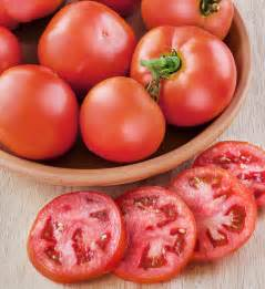 Best Tomatoes For Container Gardening - better bush tomato compact plants good size fruit