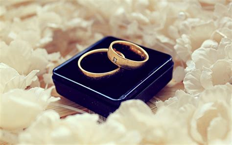 couple ring hd wallpaper love rings wallpapers hd desktop and mobile backgrounds