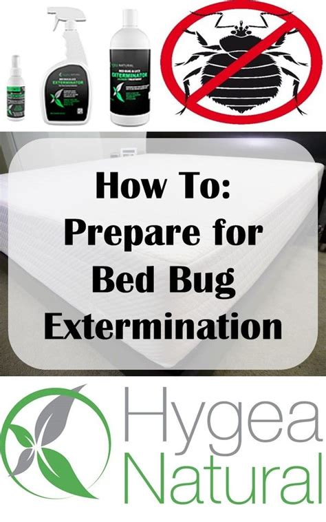 bed bug preparation 1000 ideas about treatment for bed bugs on pinterest