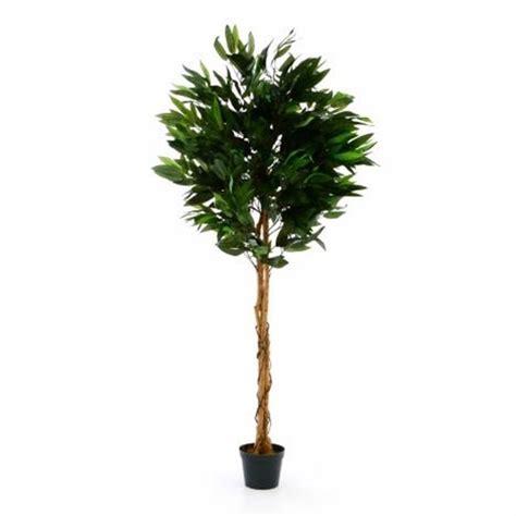 piante finte da arredo piante finte artificiali da arredo interno mango 180 cm