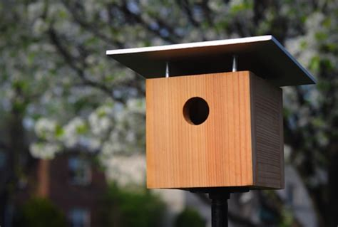 easy bird house homemade wooden bird house plan bird house plans