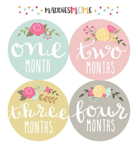 printable baby stickers baby girl monthly stickers monthly baby sticker instant