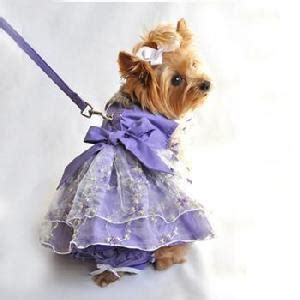 teacup yorkie clothing dress  dog clothes   pets