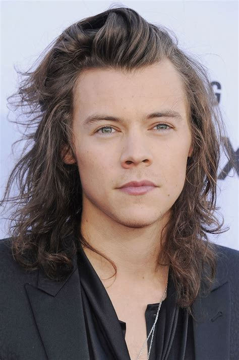 Harry Styles Hairstyle 2014 by The Top S Hairstyles For 2016 Crew