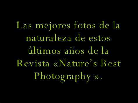 imagenes impactantes de la naturaleza mejores fotos de la naturaleza