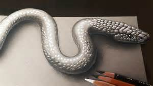 How To Make A 3d Snake Out Of Paper - how to draw a realistic 3d snake