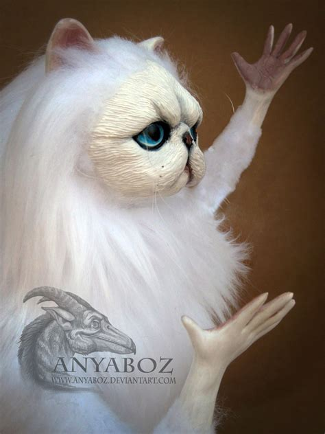 Persian Cat Meme - new persian cat room guardian by anyaboz on deviantart