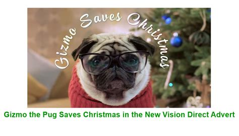 pug advert gizmo the pug saves in the new vision direct advert the frenchie mummy
