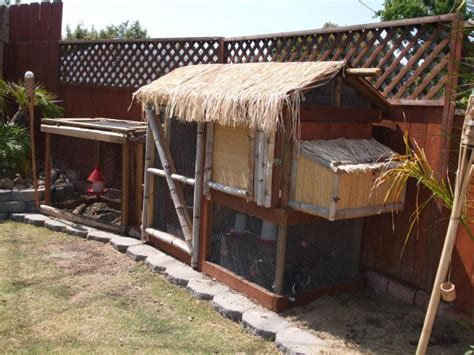 tiki hut dog house tiki coop