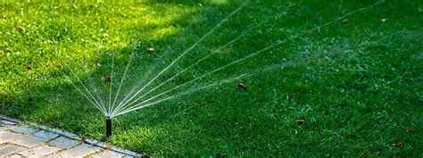 Course On Lawns What You Should by Lawn Watering Archives Green
