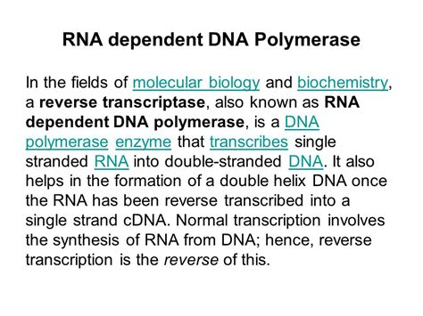 transcriptase synthesizes a dna molecule from an rna template transcriptase rna dependent dna polymerase ppt