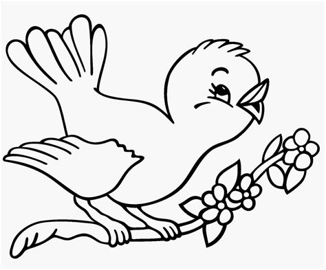 coloring pages birds printable quiver coloring bird coloring pages