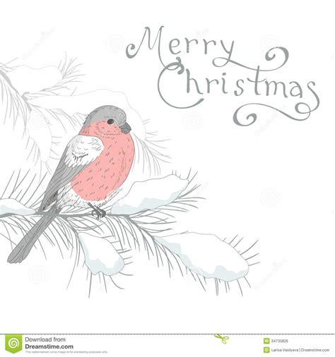 images of christmas cards to draw greeting card with bird 4 royalty free stock image image