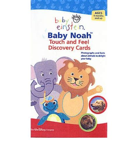 my touch and feel picture cards animals my 1st t f picture cards books animal touch and feel discovery cards julie aigner clark