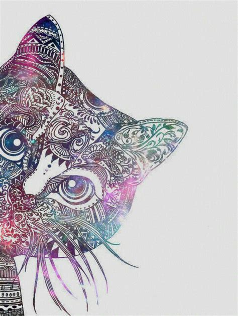 cat wallpaper we heart it fond iphone fond d 233 cran image 3166004 par patrisha