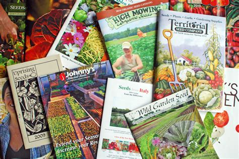 flower garden catalogs garden catalogs 28 images free catalogs request