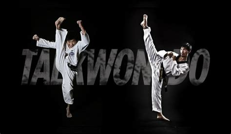 itf itf martial arts wtf taekwondo or itf taekwondo what should i choose